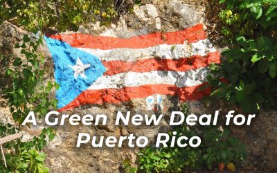 Puerto Rico and the Virgin Islands Need the Green New Deal Now
